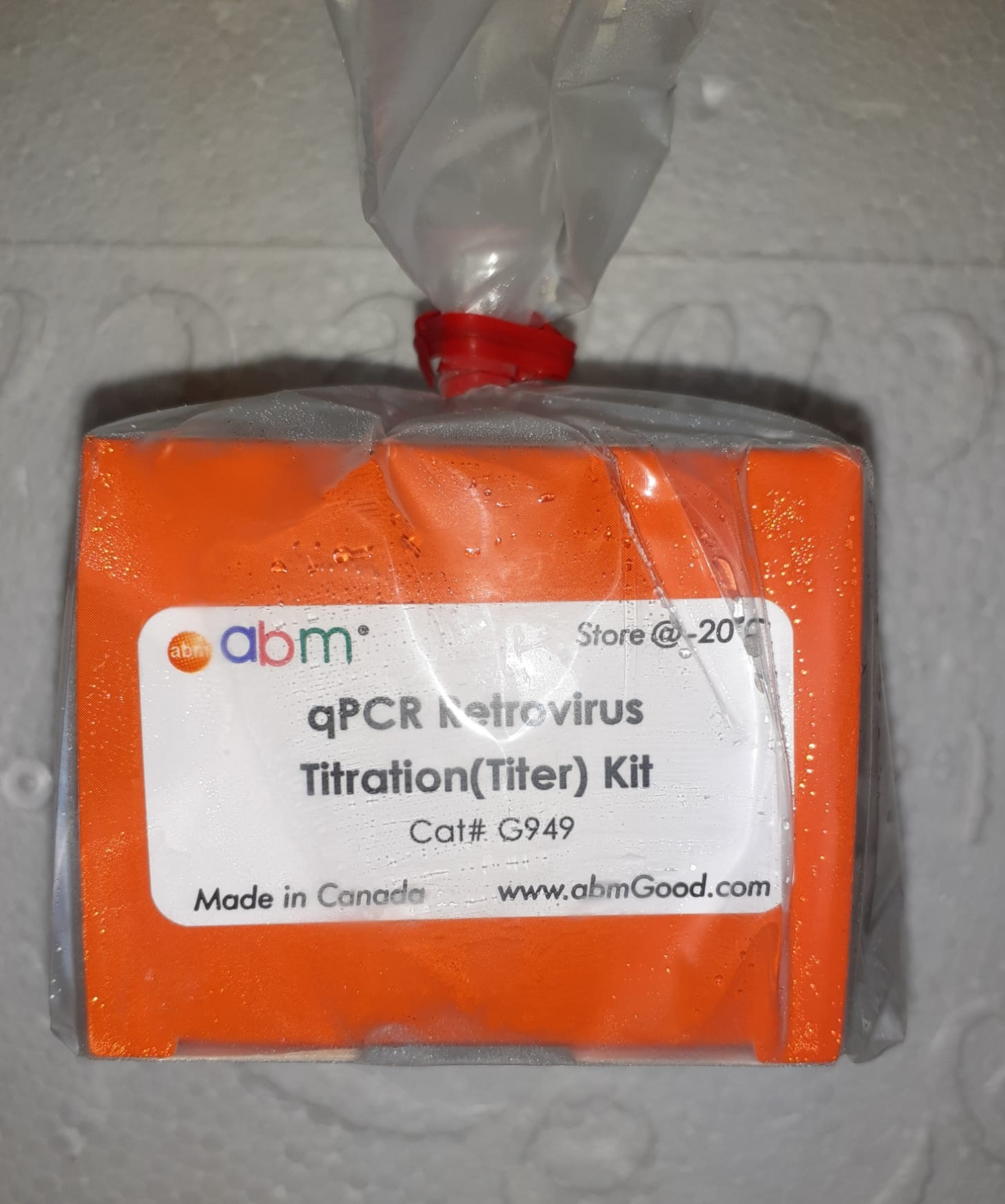 qPCR and One-Step RT MasterMixes
